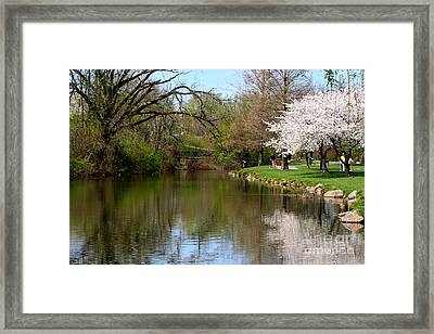 Baker Park Framed Print by Patti Whitten