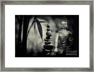Balance Framed Print by Tim Gainey
