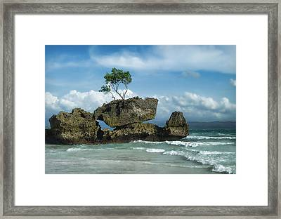 Balancing Act Framed Print by Kim Andelkovic