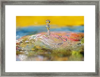 Balancing Act Framed Print by Lisa Knechtel