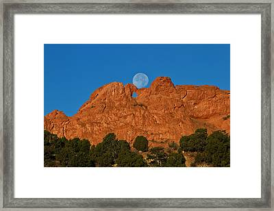 Framed Print featuring the photograph Balancing Act by Ronda Kimbrow