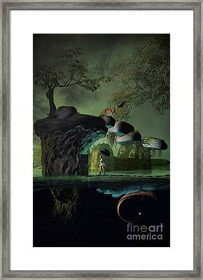 Balancing Life Framed Print by Georgina Hannay