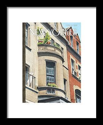 Brownstones Framed Prints