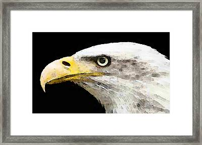 Bald Eagle By Sharon Cummings Framed Print by William Patrick