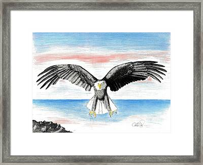 Framed Print featuring the drawing Bald Eagle by David Jackson