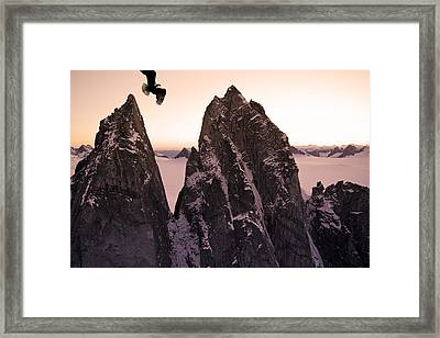 Bald Eagle Flying Past Taku Towers On Framed Print by John Hyde