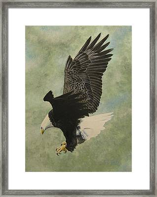 Framed Print featuring the painting Bald Eagle by Stan Tenney