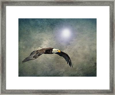 Bald Eagle Textured Art Framed Print by David Dehner