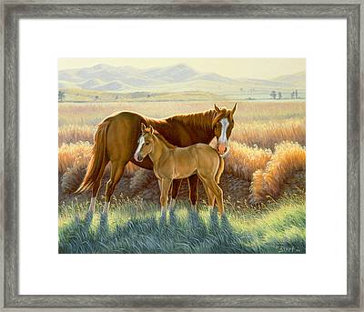 Bald-faced Sorrel And Colt Framed Print