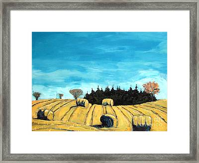 Baleful Day Framed Print by Charlie Spear