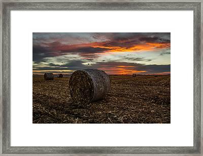 Bales Framed Print by Aaron J Groen