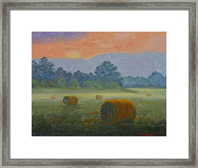Bales At Dawn Framed Print by Tommy Thompson