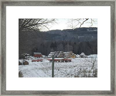 Framed Print featuring the photograph Bales Of Hay by Brenda Brown