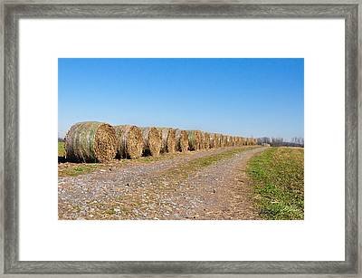 Bales Of Hay On An Old Farm Road Framed Print by Bill Cannon