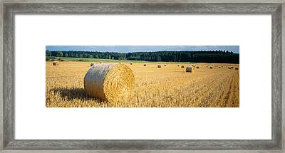 Bales Of Hay Southern Germany Framed Print by Panoramic Images