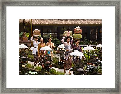 Bali Temple Offerings Framed Print by Rick Piper Photography