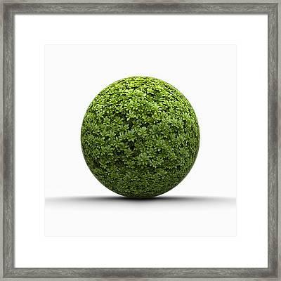 Ball Of Leaves Framed Print by Jorg Greuel