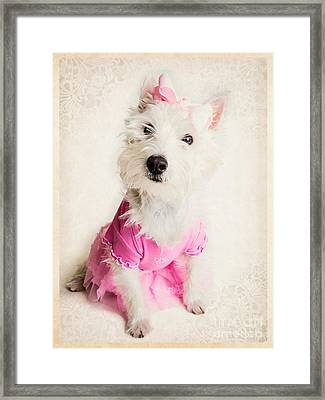 Ballerina Dog Framed Print by Edward Fielding