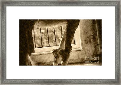 Ballet Stretch Framed Print