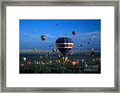 Balloon Festival Framed Print by Mark Newman