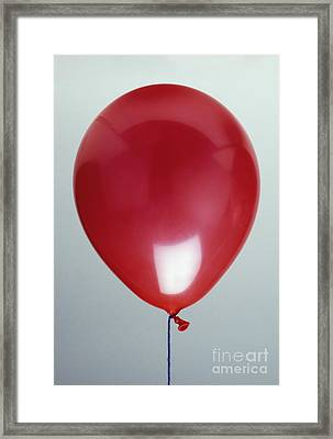 Balloon Filled Wirh Helium Framed Print by Clive Streeter / Dorling Kindersley