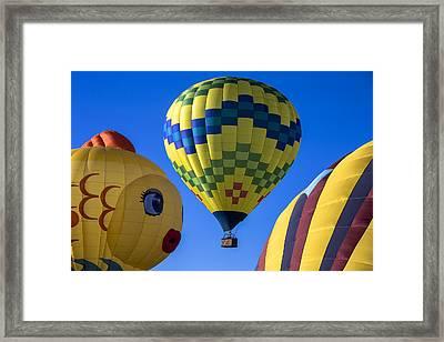 Ballooning Framed Print