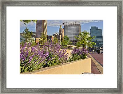 Framed Print featuring the photograph Baltimore Inner Harbor With Flowers by Marianne Campolongo