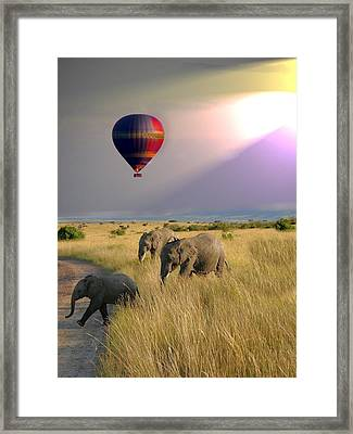 Baloon Safari Framed Print