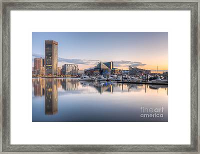 Baltimore Inner Harbor Skyline At Dawn II Framed Print by Clarence Holmes