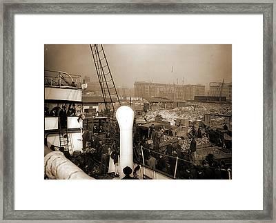 Baltimore, Maryland, Unloading Banana Steamer, Harbors Framed Print by Litz Collection