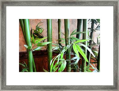 Framed Print featuring the photograph Plant -  Bamboo  -  Luther Fine Art by Luther Fine Art
