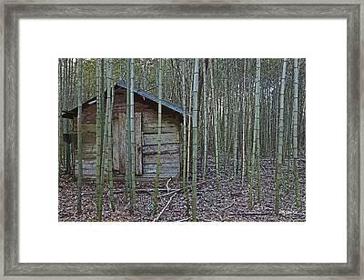 Bamboo Abandoned House Old Shed - Overtaken Framed Print