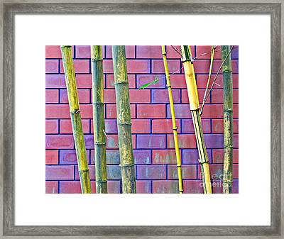 Bamboo And Brick Framed Print by Ethna Gillespie