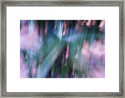 Framed Print featuring the photograph Bamboo Explosion by Beverly Parks