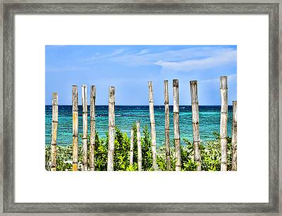 Bamboo Fence Framed Print by Keith Ducker