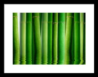 Fengshui Framed Prints