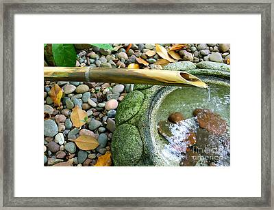 Bamboo Fountain Framed Print