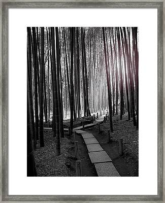 Framed Print featuring the photograph Bamboo Grove At Dusk by Larry Knipfing