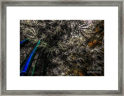 bamboo III - blue - yellow Framed Print by Hannes Cmarits