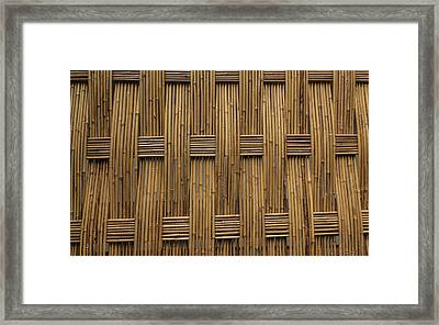 Framed Print featuring the photograph Bamboo by Jacqui Boonstra