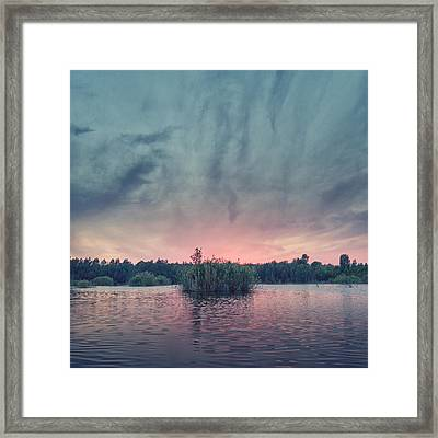 Bamboo Lake Framed Print by Stelios Kleanthous