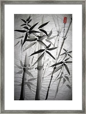 Bamboo Framed Print by Mary Spyridon Thompson