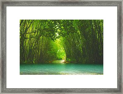 bamboo path to  Blue Lagoon  Framed Print by Dennis Baswell