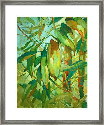Bamboo Series Framed Print