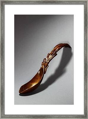 Bamboo Spoon 1 Framed Print by Abram Barrett