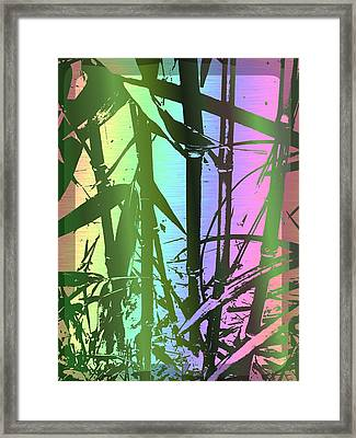 Bamboo Study 8 Framed Print by Tim Allen
