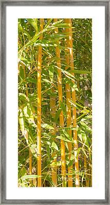 Bamboo Vertical Framed Print