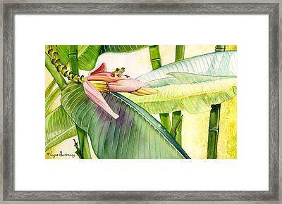 Banana Bloom Framed Print