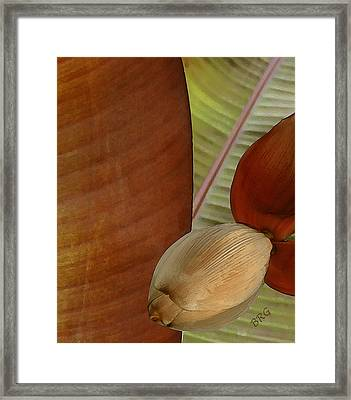 Banana Composition IIi Framed Print