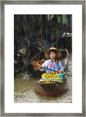 Framed Print featuring the photograph Banana Vendor In The Rain by Rob Tullis
